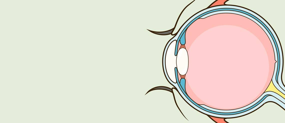 Tränenfilminstabilität und Entzündung - Hilfe bei Trockenen Augen
